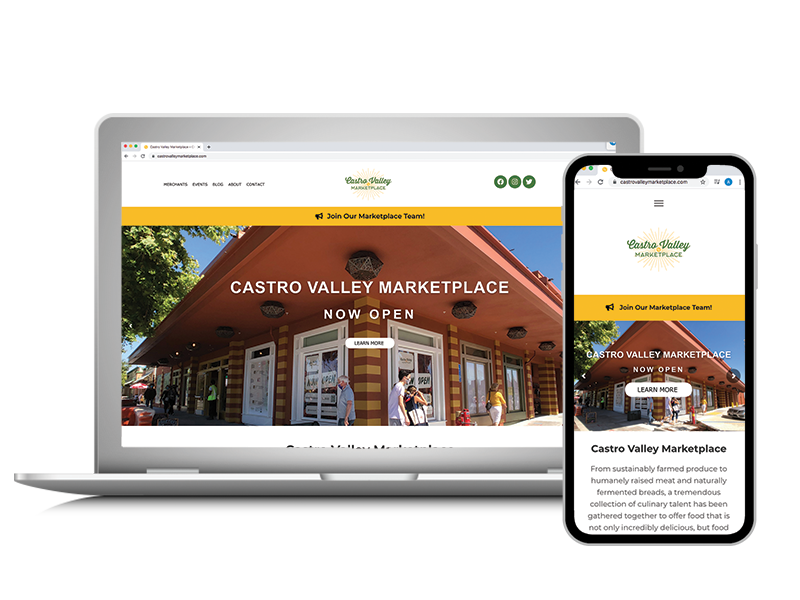 Dolphin-Graphics-Project-Castro-Valley-Marketplace